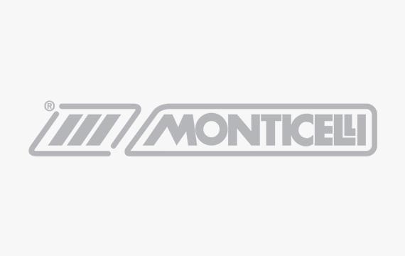 logotipo MONTICELLI